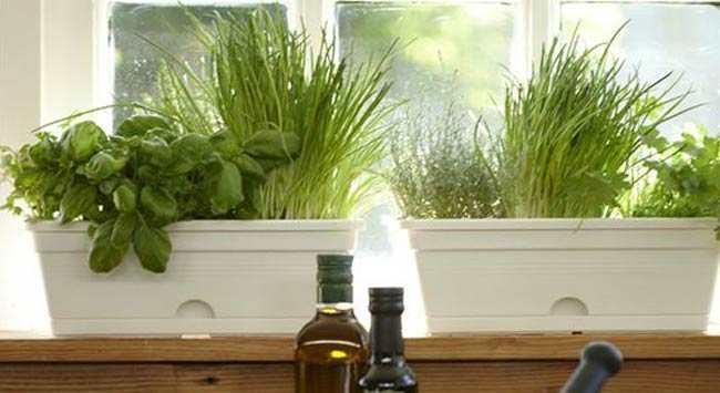 Vensterbank inrichten decoratie idee n gelukkigerwonen for Decoratie vensterbank keuken