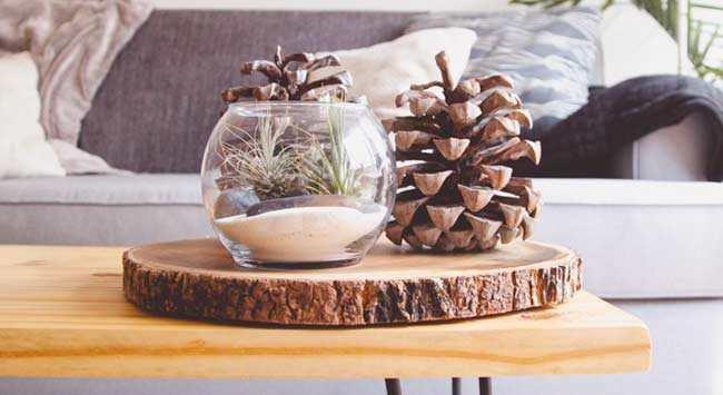 Kleine Woonkamer Tips : Kleine woonkamer inrichten ideeën op een rij gelukkigerwonen